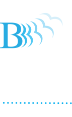 Business Freedom Lifestyle